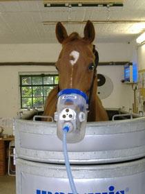 Inhalationstherapie mit dem Inhalator von Medisolan