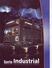 Serie Industrial (Generadores Eléctricos a Nafta)