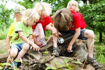 NAJU-Freizeiten für Kinder