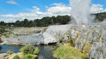 In Rotorua auf der Nordinsel