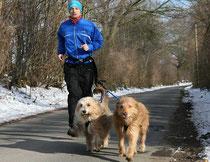 Luna und Kiwi joggen am liebsten bei Temperaturen um null Grad