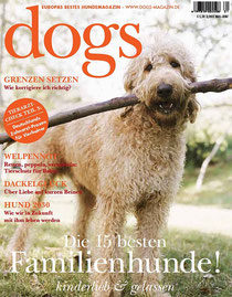 dogs 3/2011
