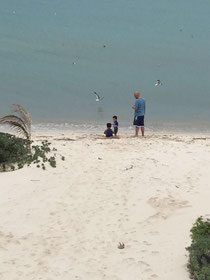Giving food to the sea birds