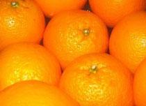 """""""A.C.H."""" ASOCIACIÓN DE CITRICULTORES DE HORNACHUELOS - """"La fruta es, a veces, tan eficaz como los fármacos antihipertensivos""""."""
