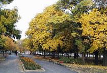 Исторический бульвар Таганрог