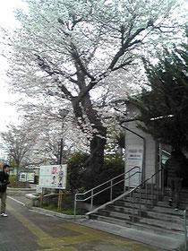 JR千代川駅