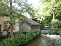 2012年6月マトリックス・エナジェティクスプラクティショナートレーニング in Kirchzarten (ドイツ)会場付近の風景