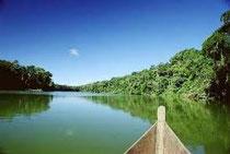 Amazzonia Perù - Tarapoto