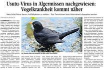 Usutu-Virus Algermissen