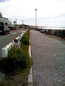 今回の休憩場所。海までスグです。