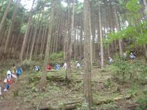 佐野市有林内を降りる。