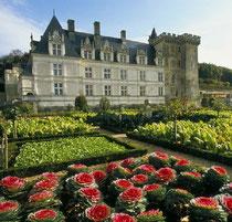 Schloss und Gärten von Villandry © ATOUT FRANCE/Catherine Bibollet