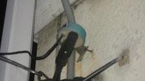 共同受信設備からの保安器