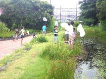 トンボはドコまで飛ぶか調査    子供たちが応援に来てくれました    (2012年8月6日)