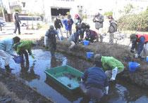 掻い掘り作業と見学者          (2014年2月22日)