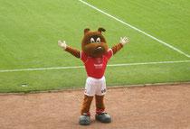 Das Maskottchen des Barnsley FC