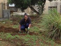 organic farming at MFRN