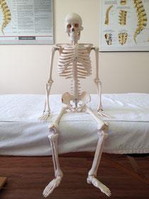 Karlchen, das Skelett