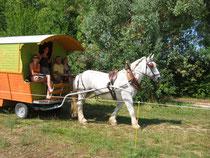 Vacances en famille en roulotte tirée par un cheval