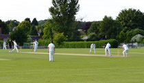Cricket on Hook Meadow in Crondall