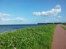 Blick von der Promenade über die Ostsee