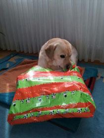Colin beim Auspacken :-)