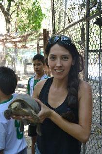 Con la tortuga Morrocoy