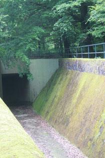 Überlauf am Damm (Foto G. Franke)