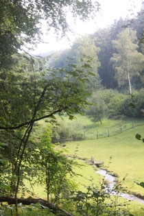 im Holzbachtal