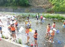 川の生物観察