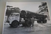 アーコール工場周辺で採れた木材