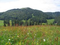 Herzogenhorn von Süden