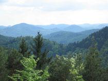Blick zur Trifels über Annweiler