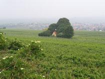 Kapelle bei Bockenheim