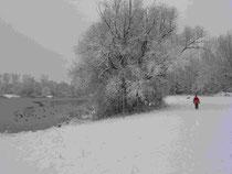 Maudacher Bruch im Winter 2010/11