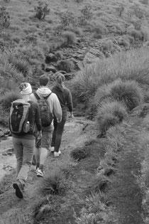 Wandern in den Horten Plains