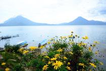 """Der """"Lago Atitlan"""" ... ist übrigens selbst ein riesengroßer Krater ...."""