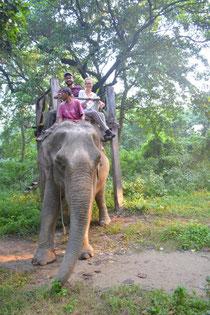 Echt Elefantös ...