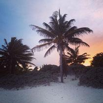 Palmenstrand von Tulum