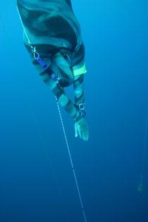 free diving villefranche sur mer