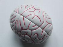 K8 Master Ball Brain
