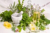 Phytotherapie und Pflanzenheilkunde in der Praxis für Osteopathie und Naturheilkunde Miriam Reinhard