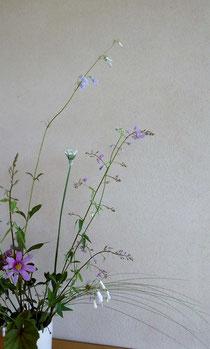 真の日本料理「美菜ガルテンふるかわ」野の花は楚々として