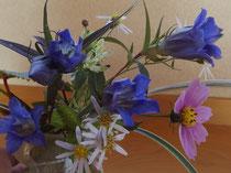 V真の日本料理「美菜ガルテンふるかわ」野の花「竜胆」