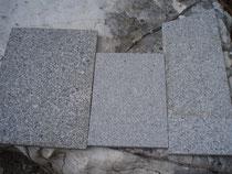 B.Granit-Lasberger-C.Granit