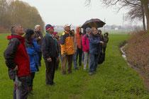 An den Quellaustritten entlang des Stünzbaches am Fuße der Isarhangleiten sind viele feuchtigkeitsliebende Pflanzen zu finden, erklärte Alfons Koller der Wandergruppe.