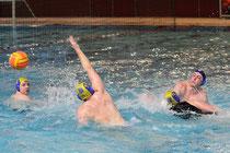 Buxtehuder SC-Wasserball-Männer