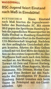 Hamburger Abendblatt vom 31.05.2014