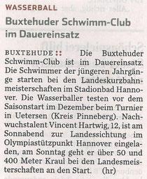 Hamburger Abendblatt vom 23.11.2013