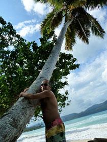 Palmen-Herzen - Samana 2012